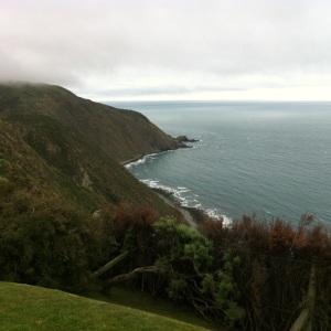 Boomrock, Wellington
