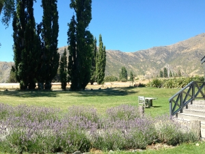 Waitiri Creek Winery, Gibbston Valley