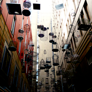 birdcages in Angel Place