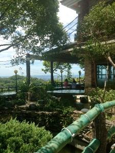 the tea house I drank at
