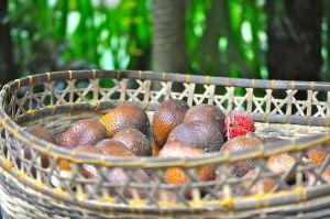 snakefruit- this pic was taken in Dec 2011