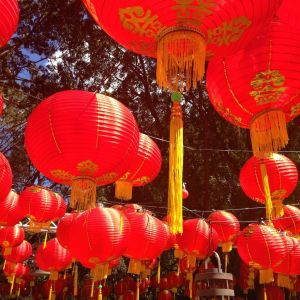 lanterns in Hyde Park for the night noodle markets