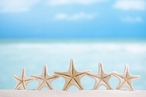 5 stars fish , white starfish with ocean, boat, white sand beach, sky and seascape, shallow dof
