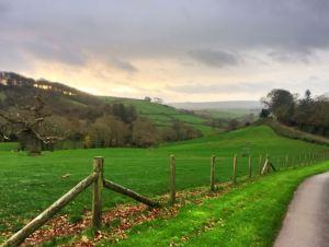 early morning walk in Devon