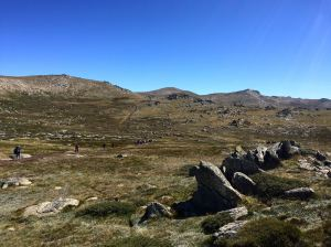 The track to Mt Kosciusko...a lot of the year felt a tad like this!